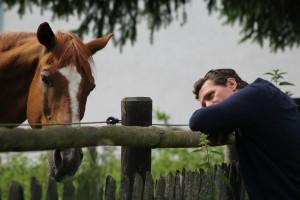 Mensch und Pferd vertrauen und verstehen einander